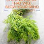 This mind-blowing trick for How to Store Herbs will change your life! The herbs will easily last for 2 weeks and often 3 or even 4 weeks in your fridge | imagelicious.com #cookingtips #kitchentips #herbs #howtostoreherbs