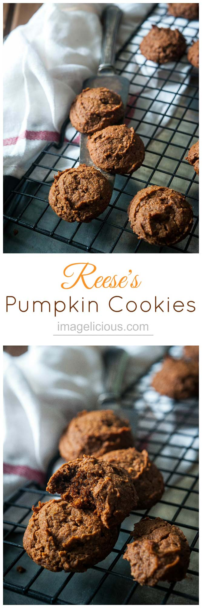 Reese's Pumpkin Cookies only use 3 ingredients and the batter comes together in a matter of minutes. Cookies have intense peanut butter taste and are perfect to use leftover pumpkin. They are also gluten-free | Imagelicious