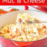 One-Pot Caprese Macaroni and Cheese is a really simple weeknight meal. No draining required. Really delicious with bursts of fresh flavours from tomatoes and basil | imagelicious.com #pasta #caprese #macaroniandcheese